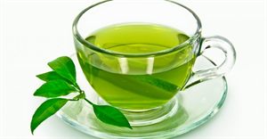 The Green Tea Market Report Offers A Sorted Out Perspective By Simplified Information Connected To Gives Wide